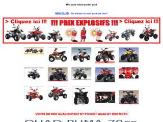 Mini-quad.info