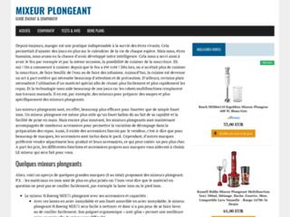 Détails : Mixeur-plongeant
