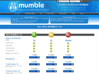 Détails : Location serveurs mumble