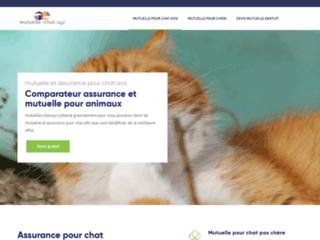 Votre mutuelle d'assurance pour chats