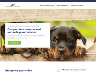Une mutuelle santé pour votre chien