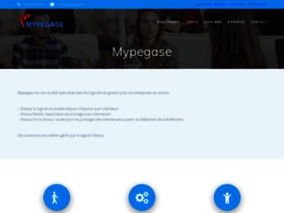 Détails : Un logiciel gestion SAP