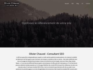 Blog SEO et webmarketing par un consultant web