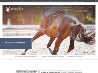 Soins thérapeutiques aux chevaux