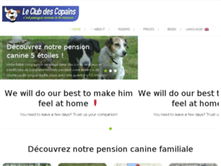 Pension pour garder votre chien à Genève et Haute Savoie