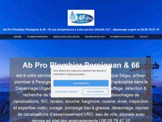 Détails : Artisan Plombier en Roussillon (66)