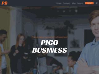 Détails : PICO Business