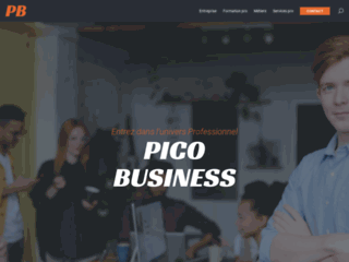 Pico Business