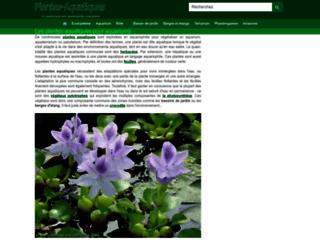 Détails : Plantes aquarium