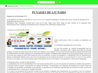 Détails : RecetteMuffin.fr, site sur les muffins