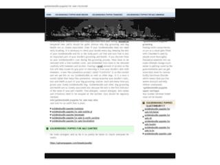 Détails : rechercheensoinsinfirmiers.com