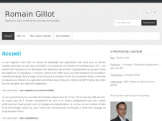 Détails : R. Gillot   Consultant Informatique