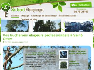 Détails : Travaux d'élagage, abattage, démontage et taille d'arbres à Hazebrouck