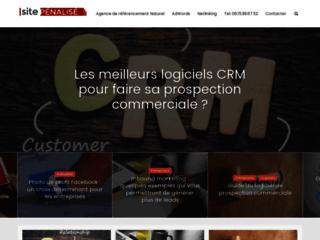 Site Pénalisé - blog d'un consultant SEO
