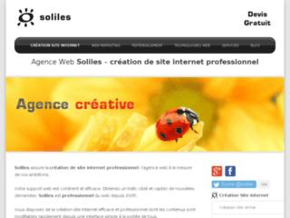 Détails : création site internet et référencemenet web