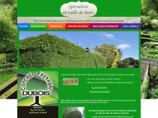 Détails : Taille de haies de cèdres et autres feuillus économique-Laval-Laurentides-Lanaudière