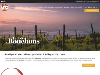 Boutique de vins, bières, spiritueux à Bellegreville, Caen