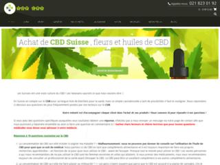 Top CBD Suisse