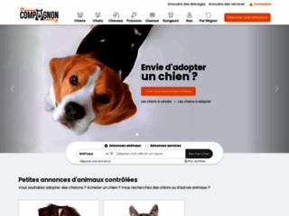 Détails : Annonces animaux