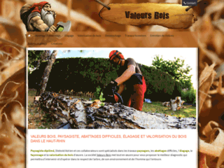 Détails : Paysagiste Abattages Elagage et Valorisation du bois dans le haut-rhin