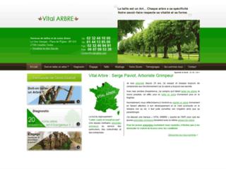 Détails : Elagage dans le 76 (Seine Maritime)