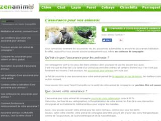 www.zenanimo.com