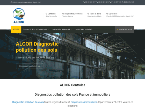 Pollution des sols, Diagnostic pollution