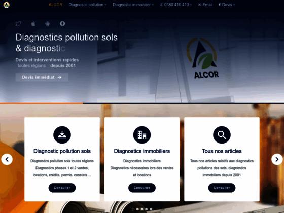 Pollution des sols, Diagnostic pollution