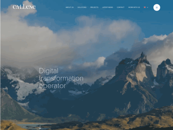 Altima Hosting, hébergement de sites ebusiness