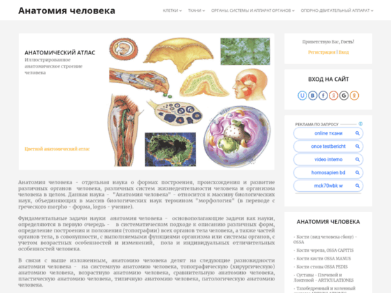 Скриншот сайта anatomia.ucoz.com