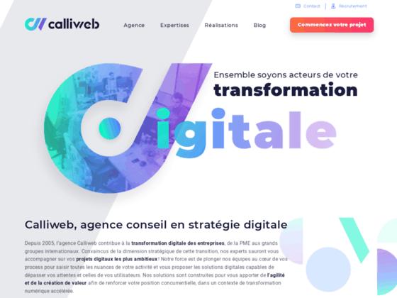 Cablliweb, réalisation de site e-commerce