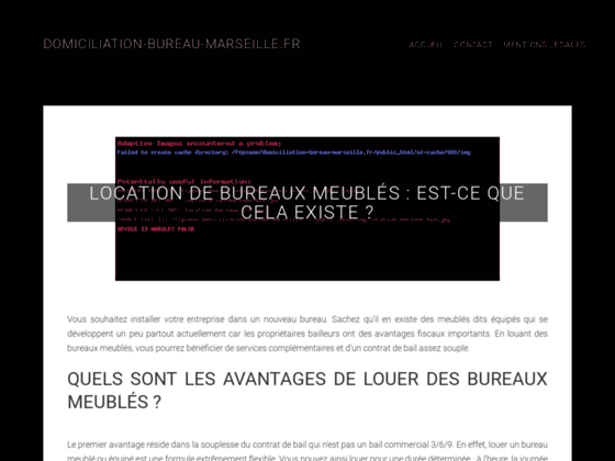 SEBASTOPOL MULTISERVICES domiciliation commerciale Marseille