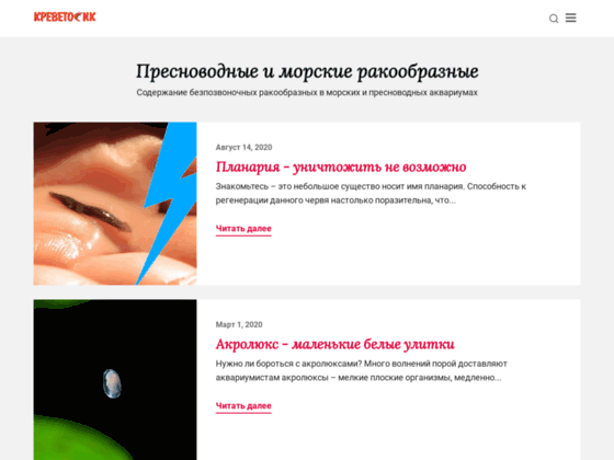 Скриншот сайта krevetosik.ru