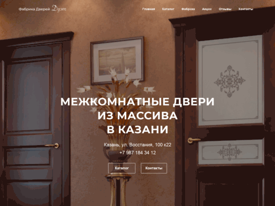 Скриншот сайта kzndoors.ru