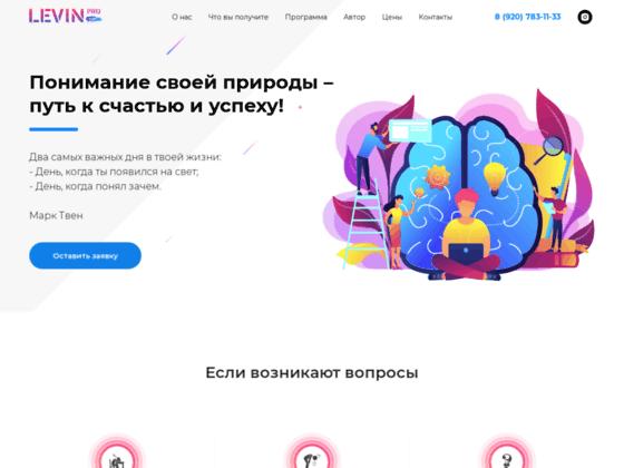 Скриншот сайта levinpro.ru