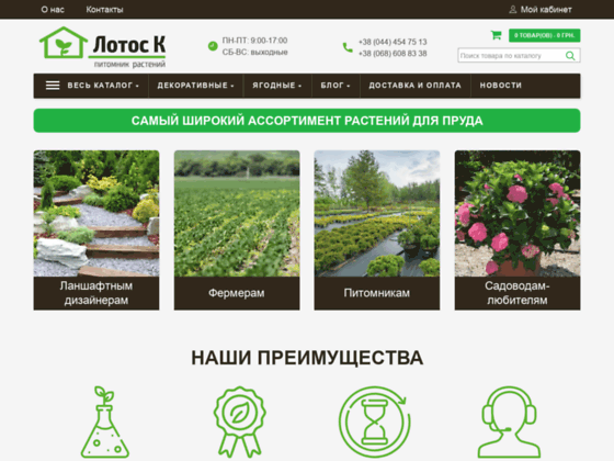 Скриншот сайта lotosk.com.ua