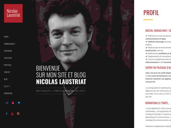 Nicolas.Laustriat.com - consultant média web
