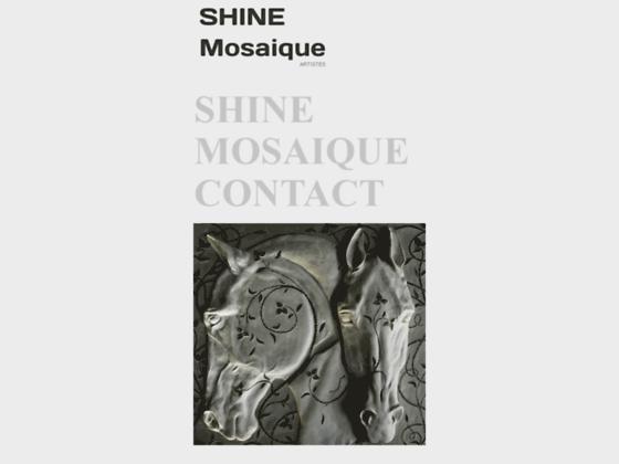 Shine Mosaique Graziella Pizzi Laurence Cappelli