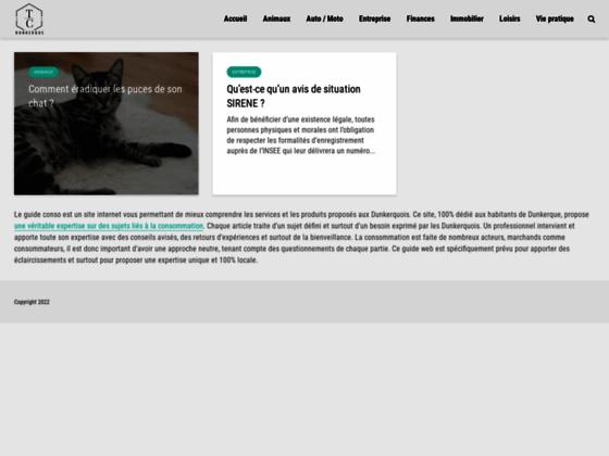 IUT Techniques de Commercialisation Dunkerque ( IUT TC): DUT Techniques de commercialisation, Lice