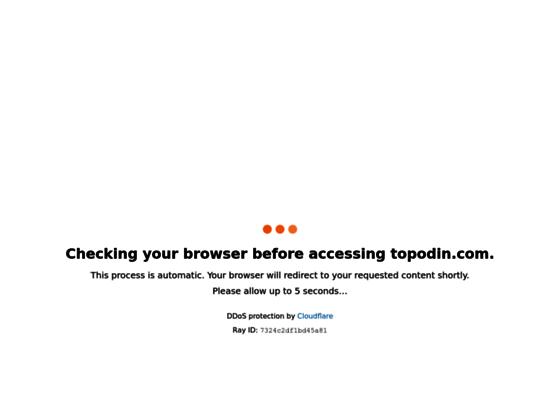 Скриншот сайта topodin.com