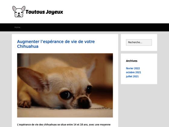 Toilettage canin à Saint Priest Lyon.