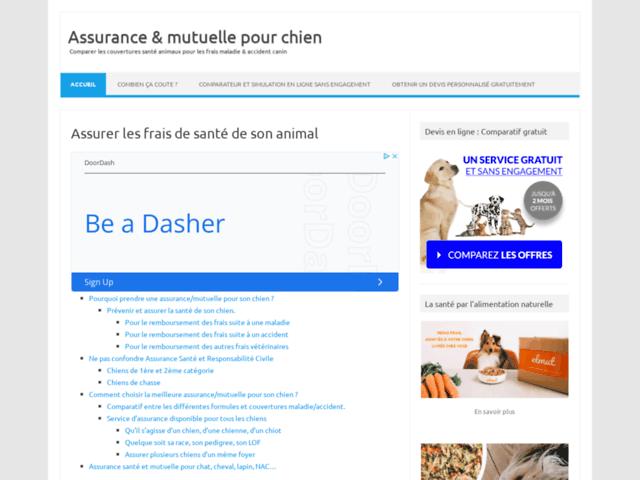 Assurance ou mutuelle santé pour chien