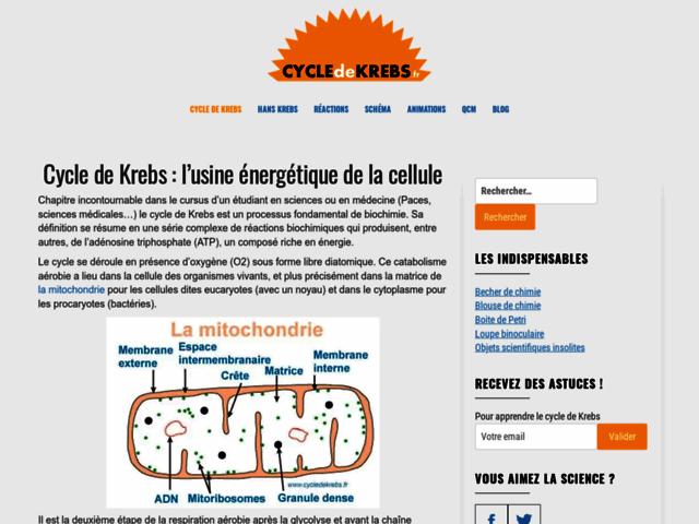 Mémoriser le cycle de Krebs