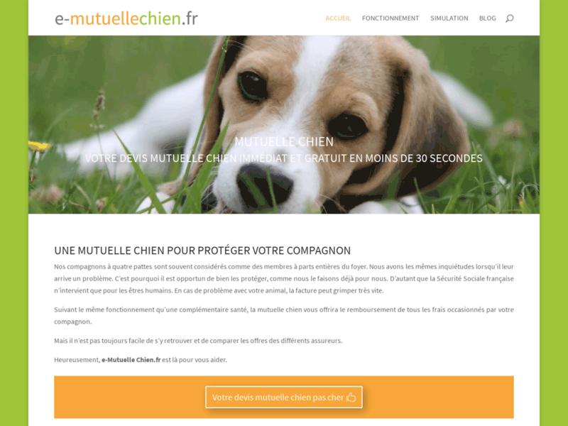 e-Mutuelle Chien, comment assurer son chien