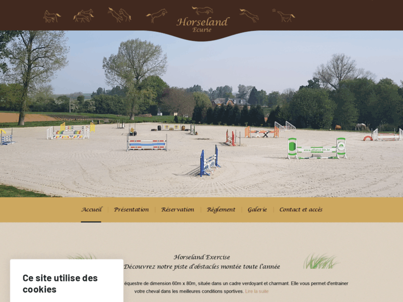 Elevage chevaux Belgique