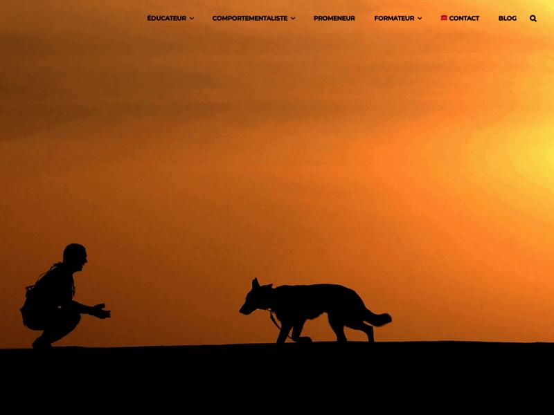 Educateur Canin, dressage professionnel de chiens à Nice