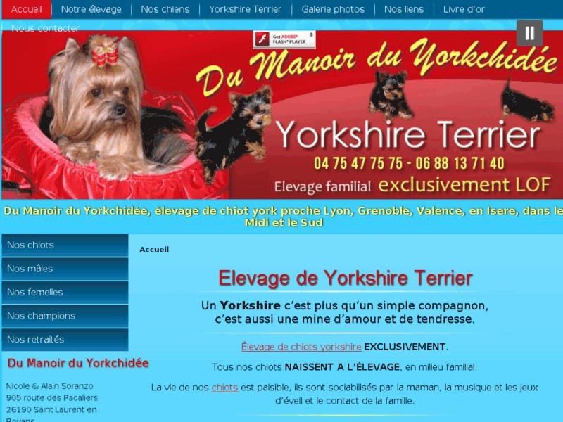 Referencement Google Saint-laurent-en-royans : Yorkshire
