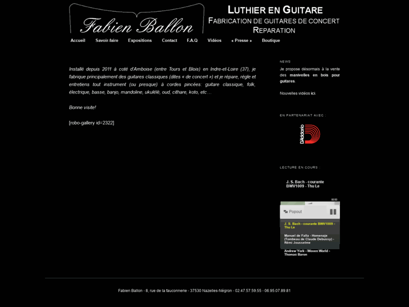 Fabien Ballon - Luthier en guitare