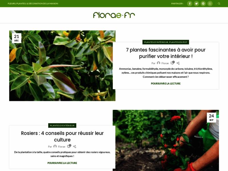 Florae, vente de fleurs et plantes en ligne