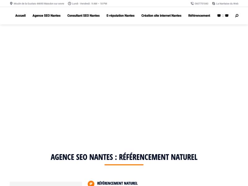 Agence Web Nantes : La Nantaise du Web